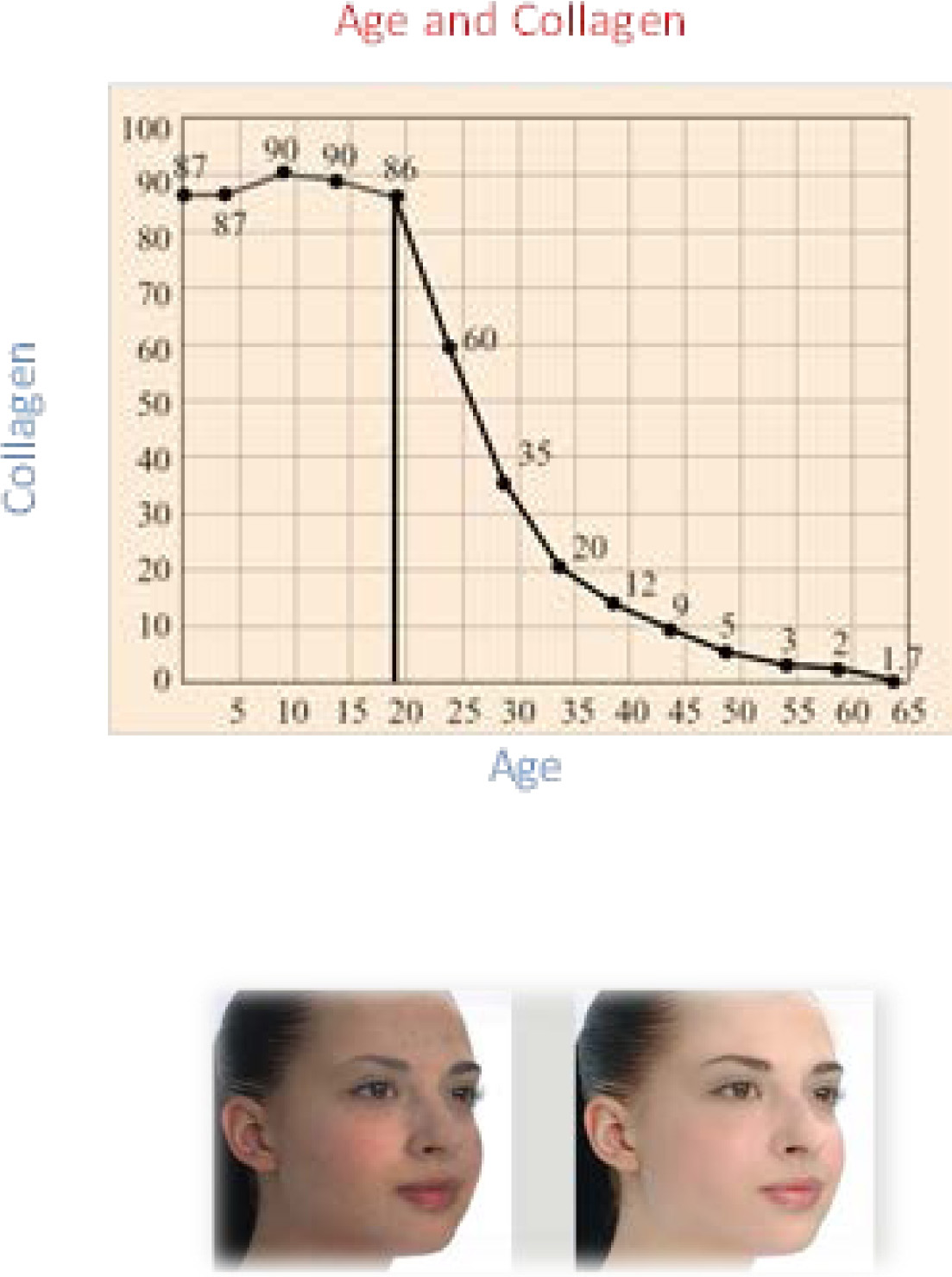 Age and Collagen